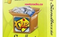 Sandboxie 5.41.0 Crack + License Key Free Download 2020 [Latest]